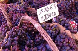 Photo for: What You Need To Know About Chinese Grape Varieties and Wines